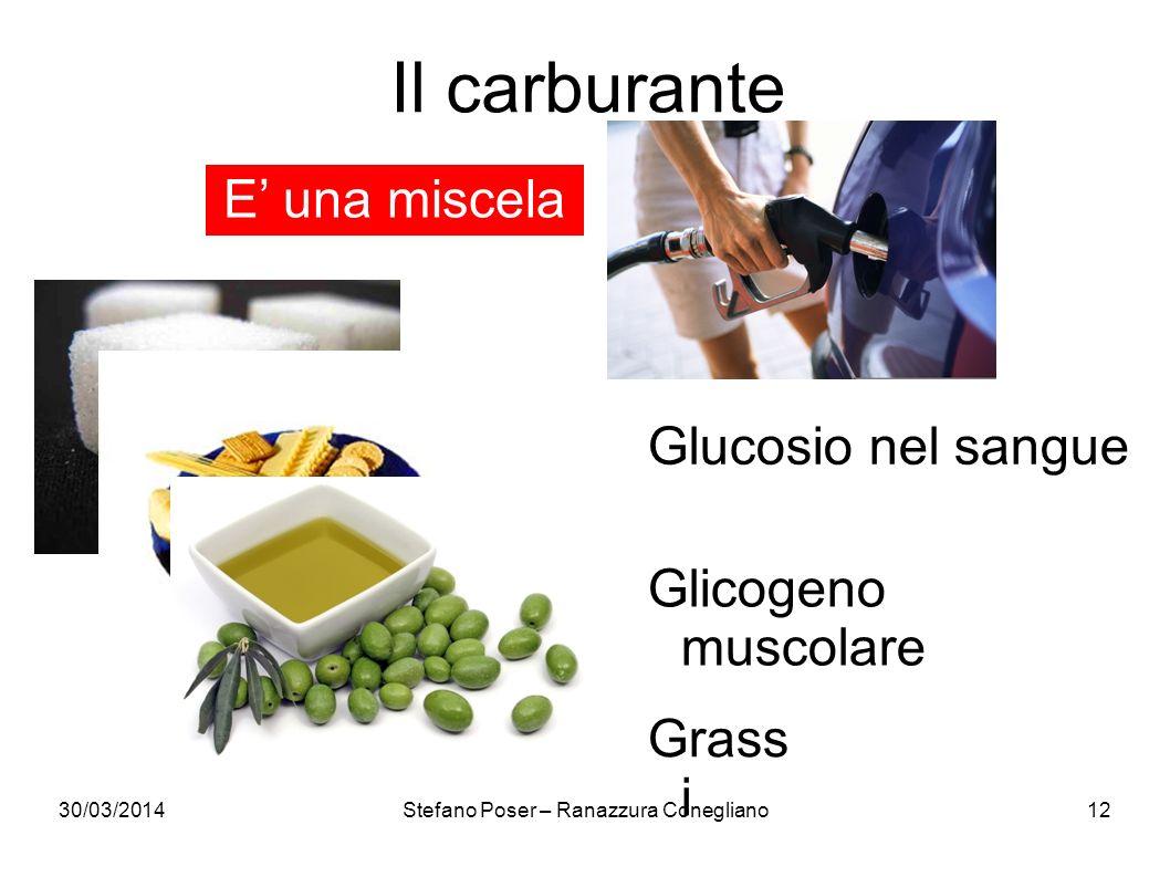 30/03/2014Stefano Poser – Ranazzura Conegliano12 Il carburante Glicogeno muscolare E una miscela Glucosio nel sangue Grass i