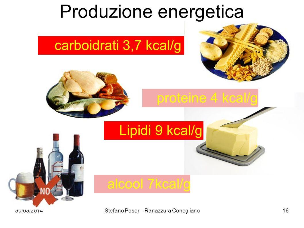 30/03/2014Stefano Poser – Ranazzura Conegliano16 Produzione energetica carboidrati 3,7 kcal/g alcool 7kcal/g proteine 4 kcal/g Lipidi 9 kcal/g
