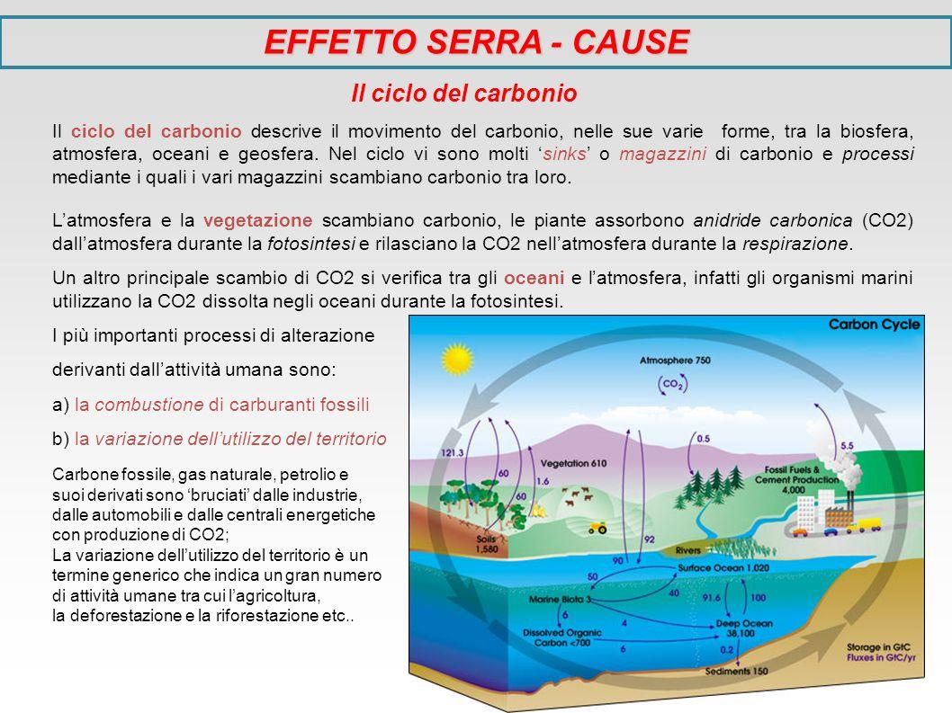 EFFETTO SERRA - CAUSE Il ciclo del carbonio Il ciclo del carbonio descrive il movimento del carbonio, nelle sue varie forme, tra la biosfera, atmosfer