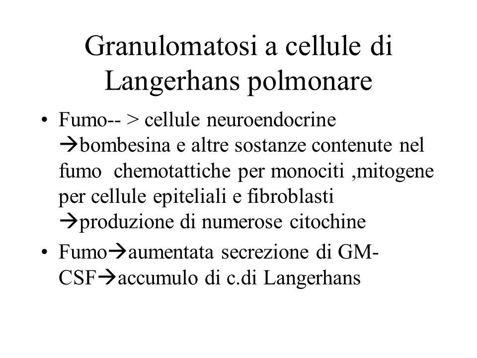 Granulomatosi a cellule di Langerhans polmonare Fumo-- > cellule neuroendocrine bombesina e altre sostanze contenute nel fumo chemotattiche per monoci