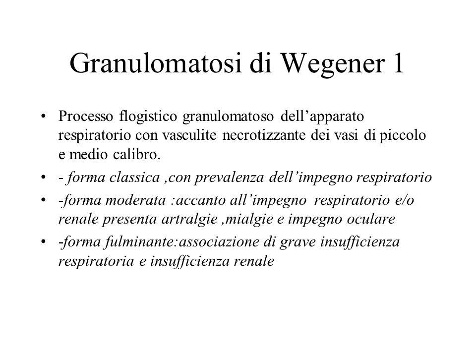 Granulomatosi di Wegener 1 Processo flogistico granulomatoso dellapparato respiratorio con vasculite necrotizzante dei vasi di piccolo e medio calibro