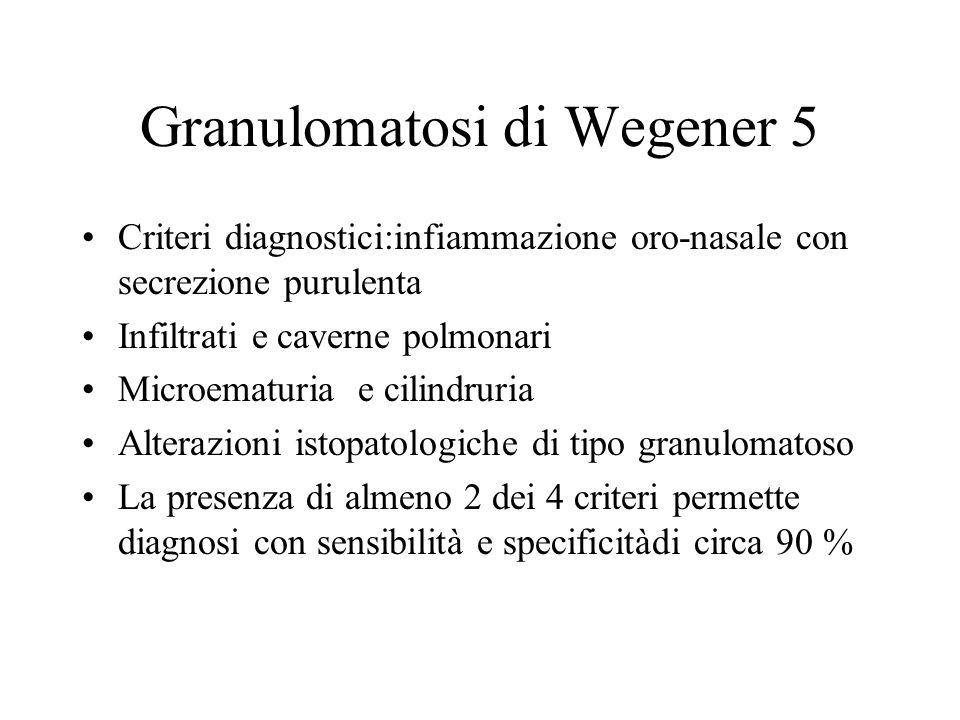 Granulomatosi di Wegener 5 Criteri diagnostici:infiammazione oro-nasale con secrezione purulenta Infiltrati e caverne polmonari Microematuria e cilind