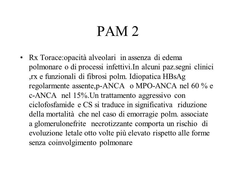 PAM 2 Rx Torace:opacità alveolari in assenza di edema polmonare o di processi infettivi.In alcuni paz.segni clinici,rx e funzionali di fibrosi polm. I