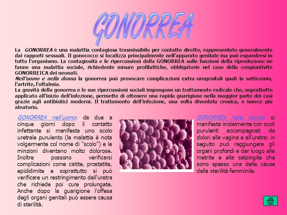 La GONORREA è una malattia contagiosa trasmissibile per contatto diretto, rappresentato generalmente dai rapporti sessuali.