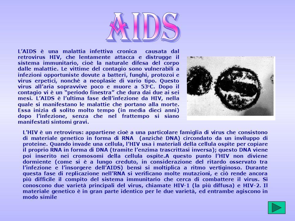 LAIDS è una malattia infettiva cronica causata dal retrovirus HIV, che lentamente attacca e distrugge il sistema immunitario, cioè la naturale difesa del corpo dalle malattie.