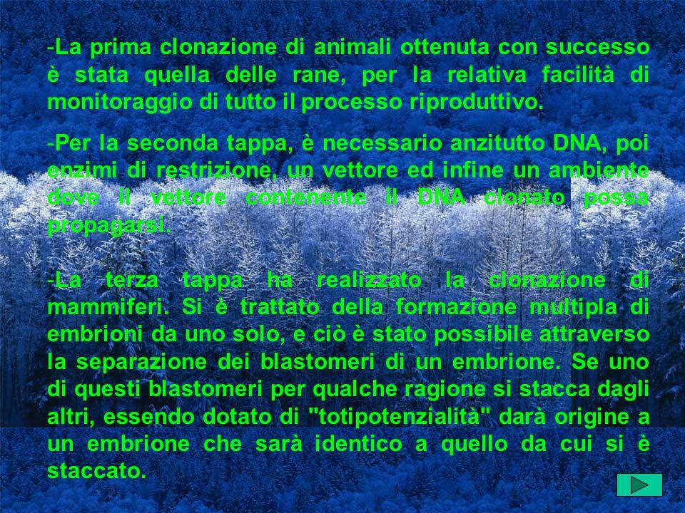 -La prima clonazione di animali ottenuta con successo è stata quella delle rane, per la relativa facilità di monitoraggio di tutto il processo riproduttivo.