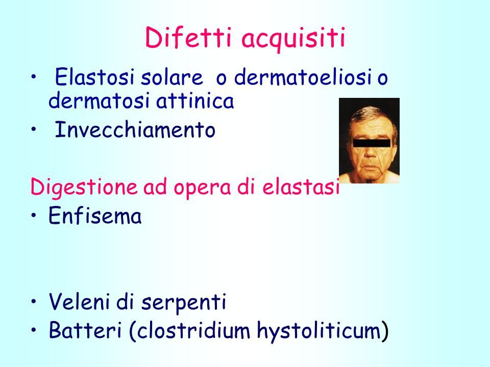 Difetti acquisiti Elastosi solare o dermatoeliosi o dermatosi attinica Invecchiamento Digestione ad opera di elastasi Enfisema Veleni di serpenti Batteri (clostridium hystoliticum)