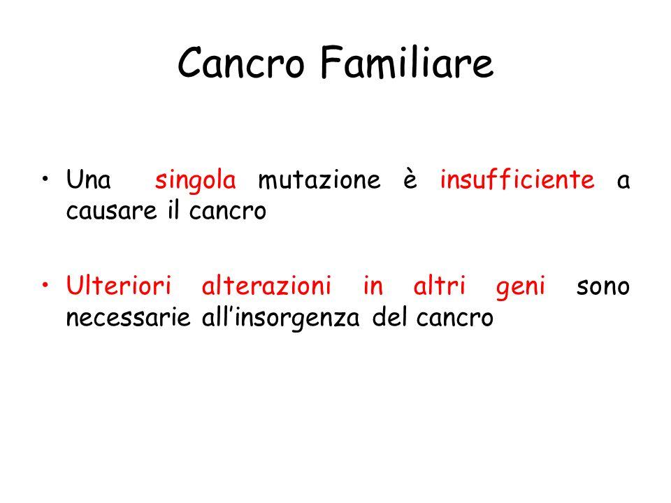Cancro Familiare Una singola mutazione è insufficiente a causare il cancro Ulteriori alterazioni in altri geni sono necessarie allinsorgenza del cancro
