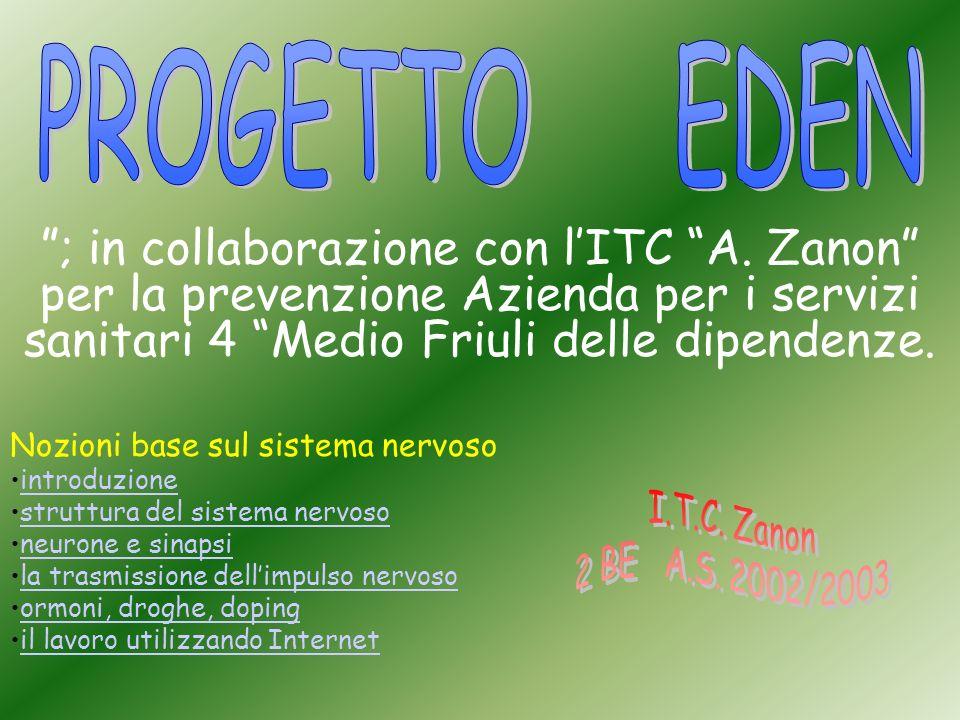 ; in collaborazione con lITC A. Zanon per la prevenzione Azienda per i servizi sanitari 4 Medio Friuli delle dipendenze. Nozioni base sul sistema nerv