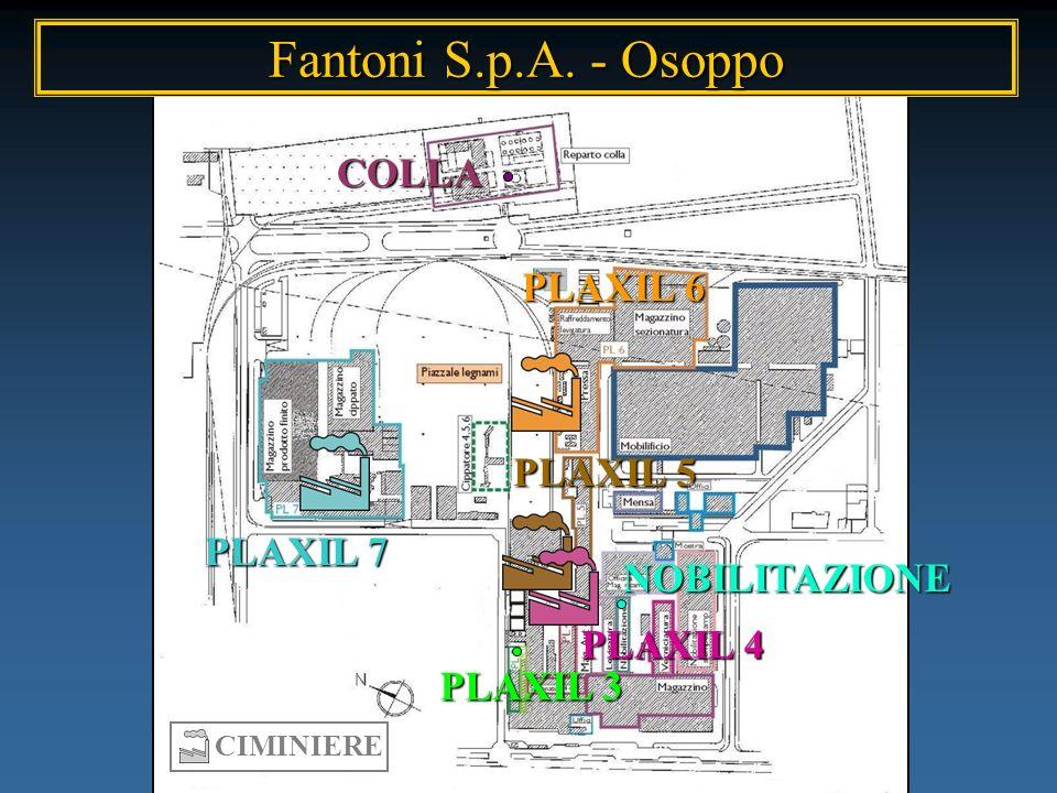 COLLA NOBILITAZIONE PLAXIL 3 PLAXIL 4 PLAXIL 5 PLAXIL 6 PLAXIL 7 CIMINIERE Fantoni S.p.A. - Osoppo