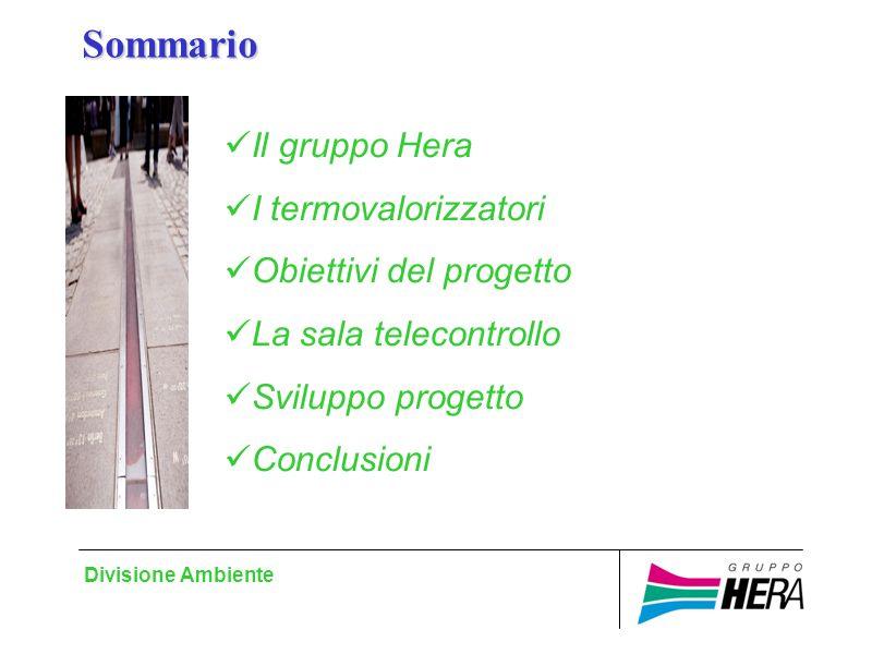 Divisione Ambiente Sommario Il gruppo Hera I termovalorizzatori Obiettivi del progetto La sala telecontrollo Sviluppo progetto Conclusioni