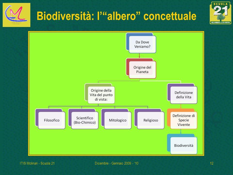 ITIS Molinari - Scuola 21Dicembre - Gennaio 2009 - '1012 Biodiversità: lalbero concettuale