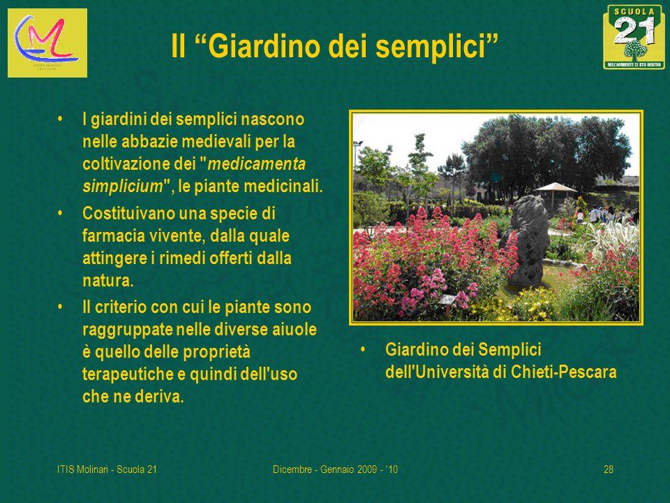 ITIS Molinari - Scuola 21Dicembre - Gennaio 2009 - '1028 Il Giardino dei semplici I giardini dei semplici nascono nelle abbazie medievali per la colti