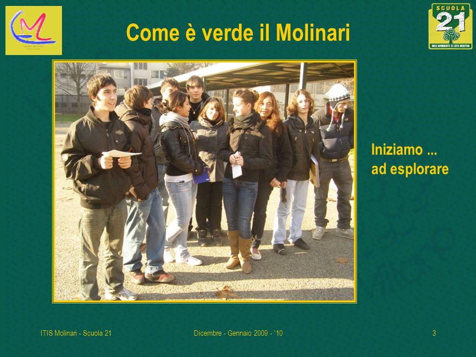 ITIS Molinari - Scuola 21Dicembre - Gennaio 2009 - '103 Come è verde il Molinari Iniziamo... ad esplorare