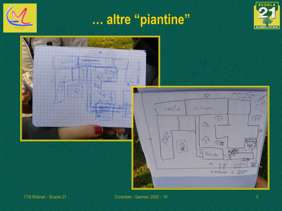ITIS Molinari - Scuola 21Dicembre - Gennaio 2009 - '105 … altre piantine