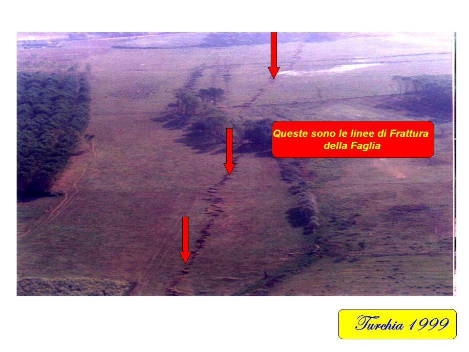 Turchia 1999 Questa è la linea di Frattura della Faglia