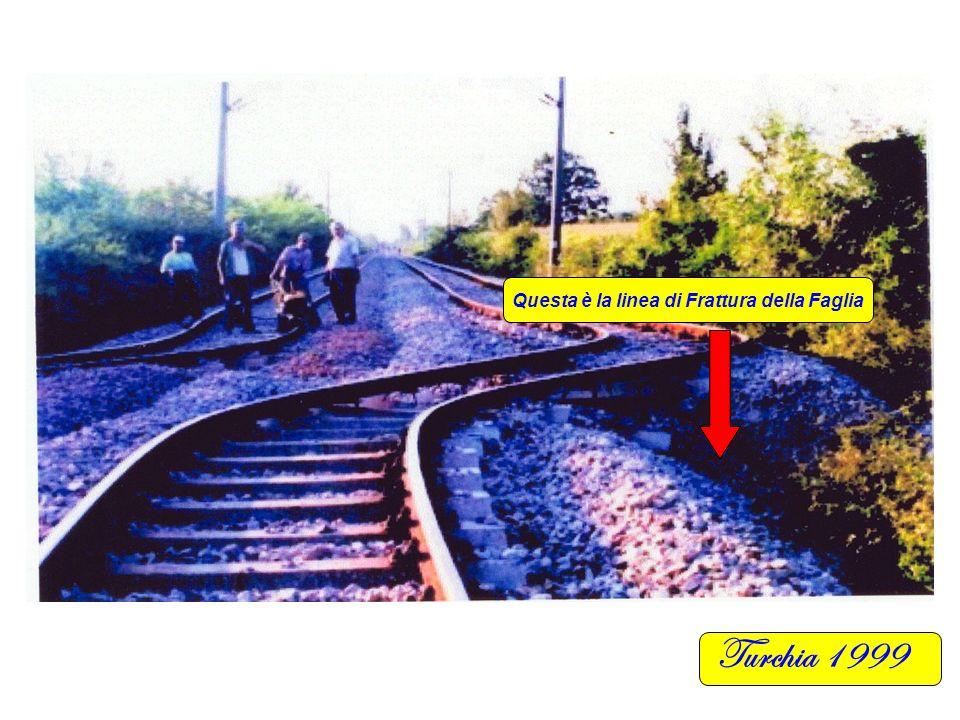 Turchia 1999 Distanza Valutata in metri circa 2 Questa è la linea di Frattura della Faglia