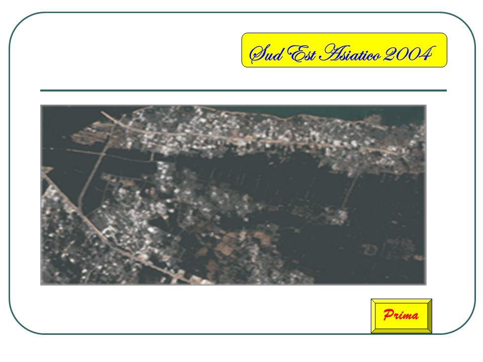 Sud Est Asiatico 2004 Dopo Questa è londa dello Tsunami