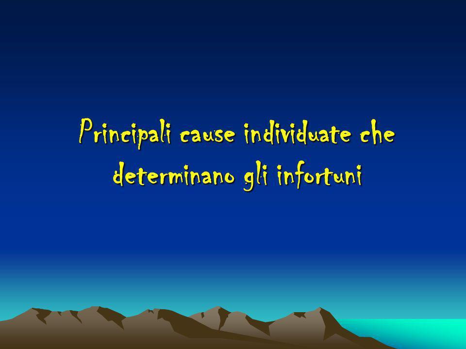 Principali cause individuate che determinano gli infortuni