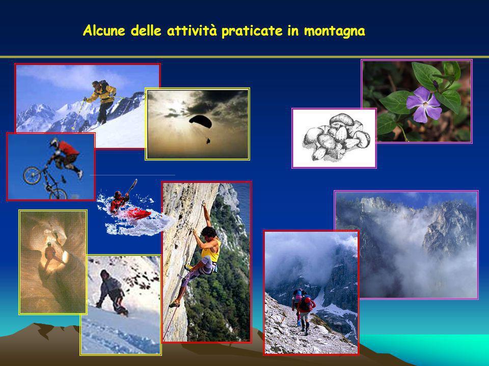 Alcune delle attività praticate in montagna