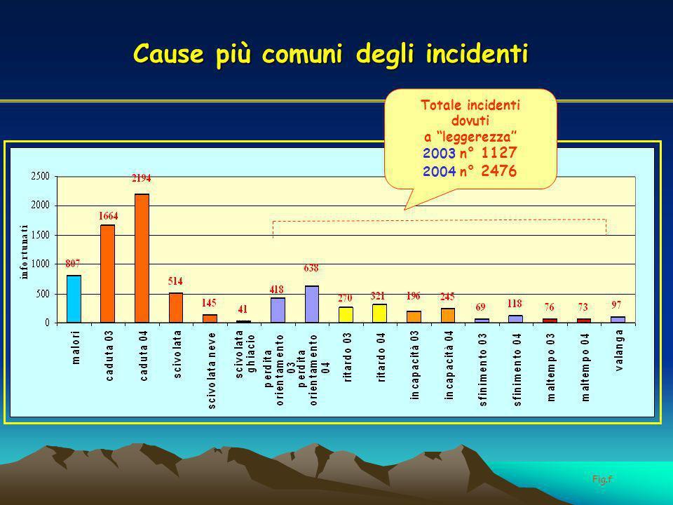 Cause più comuni degli incidenti Totale incidenti dovuti a leggerezza 2003 n° 1127 2004 n° 2476 Fig.f