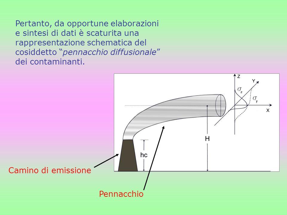 Pertanto, da opportune elaborazioni e sintesi di dati è scaturita una rappresentazione schematica del cosiddetto pennacchio diffusionale dei contamina