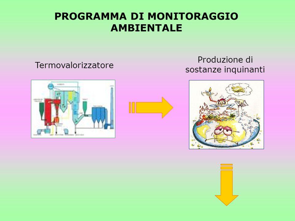 PROGRAMMA DI MONITORAGGIO AMBIENTALE Termovalorizzatore Produzione di sostanze inquinanti