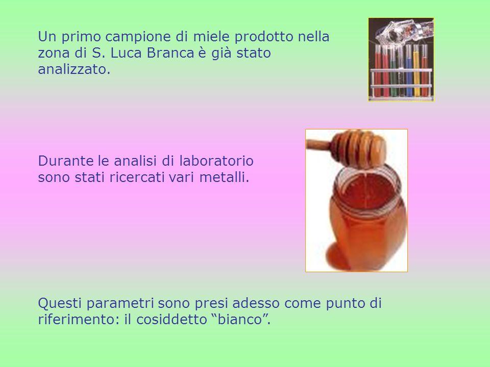 Un primo campione di miele prodotto nella zona di S. Luca Branca è già stato analizzato. Durante le analisi di laboratorio sono stati ricercati vari m