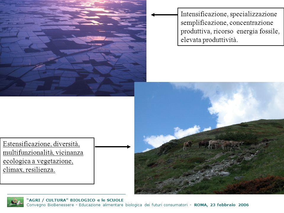 AGRI / CULTURA BIOLOGICO e le SCUOLE Convegno BioBenessere - Educazione alimentare biologica dei futuri consumatori - ROMA, 23 febbraio 2006 Intensificazione, specializzazione semplificazione, concentrazione produttiva, ricorso energia fossile, elevata produttività.