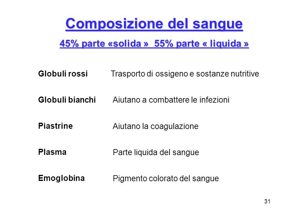 31 Composizione del sangue 45% parte «solida » 55% parte « liquida » Plasma Globuli rossi Globuli bianchi Piastrine Emoglobina Parte liquida del sangu