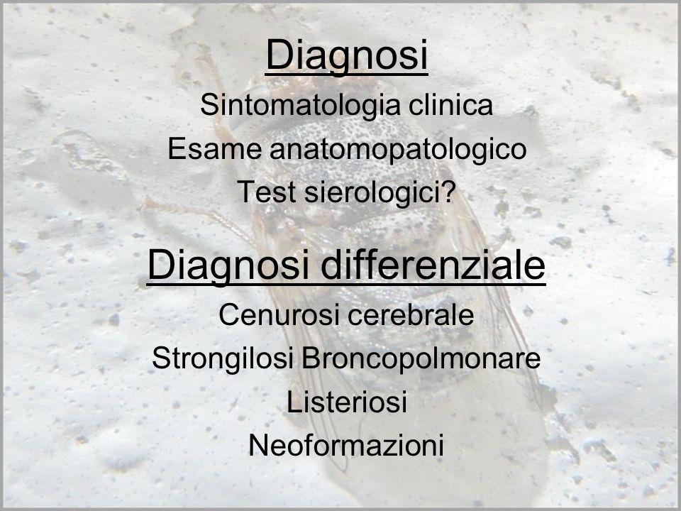 Rilievi anatomo-patologici