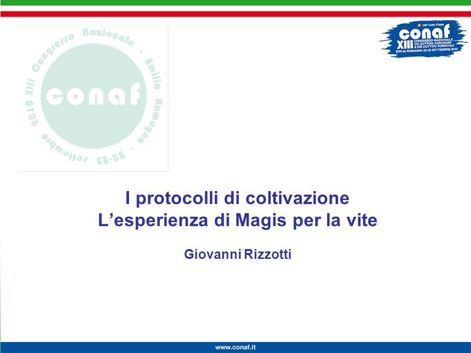 Innovazione continua per la competitività, lambiente e la salute I protocolli di coltivazione Lesperienza di Magis per la vite Giovanni Rizzotti