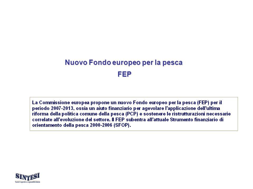 La Commissione europea propone il nuovo Fondo europeo per la pesca (FEP) quale nuovo strumento di programmazione della pesca nell ambito delle prospettive finanziarie dell UE per il periodo 2007-2013.