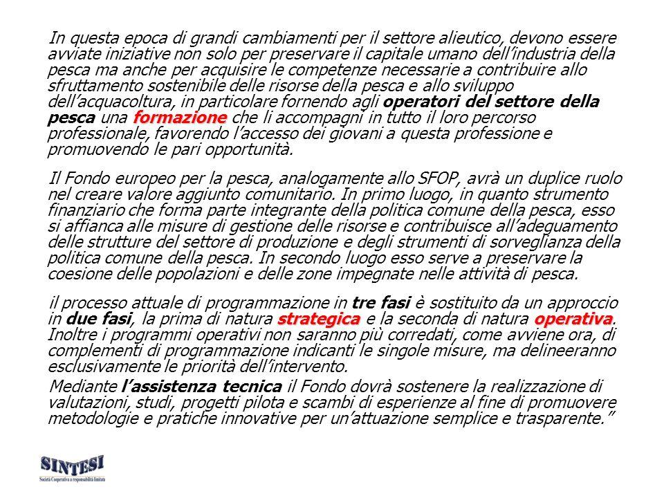 Principi di intervento Complementarità, coerenza e conformità 1.Il Fondo fornisce unassistenza complementare alle misure nazionali, regionali e locali, integrandovi le priorità comunitarie.