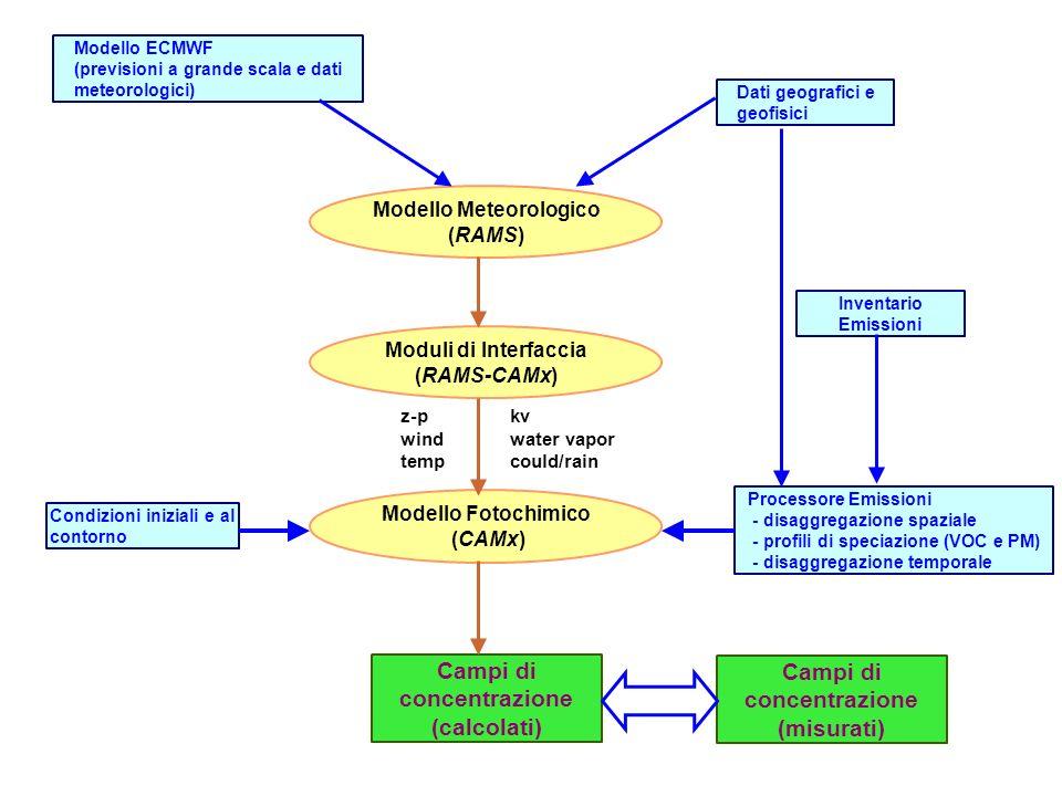 Modello ECMWF (previsioni a grande scala e dati meteorologici) Dati geografici e geofisici Modello Meteorologico (RAMS) Moduli di Interfaccia (RAMS-CAMx) Modello Fotochimico (CAMx) Campi di concentrazione (calcolati) Inventario Emissioni Processore Emissioni - disaggregazione spaziale - profili di speciazione (VOC e PM) - disaggregazione temporale Condizioni iniziali e al contorno kv water vapor could/rain z-p wind temp Campi di concentrazione (misurati)