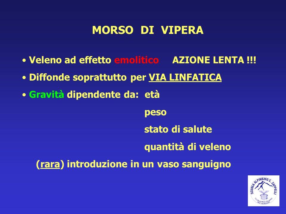 MORSO DI VIPERA Veleno ad effetto emolitico AZIONE LENTA !!! Diffonde soprattutto per VIA LINFATICA Gravità dipendente da: età peso stato di salute qu