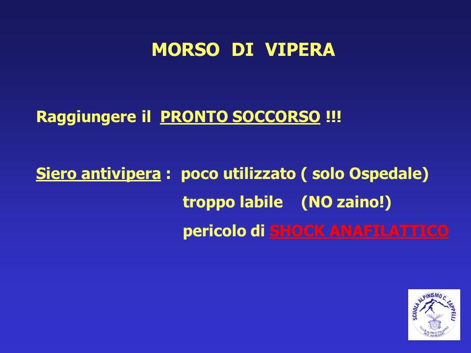 MORSO DI VIPERA Raggiungere il PRONTO SOCCORSO !!! Siero antivipera : poco utilizzato ( solo Ospedale) troppo labile (NO zaino!) pericolo di SHOCK ANA