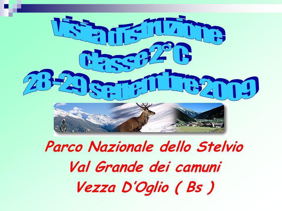 Parco Nazionale dello Stelvio Val Grande dei camuni Vezza DOglio ( Bs )