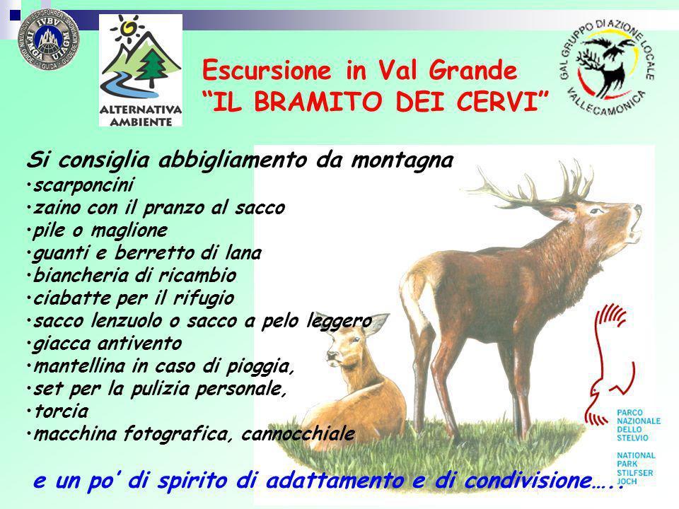 Escursione in Val Grande IL BRAMITO DEI CERVI Si consiglia abbigliamento da montagna scarponcini zaino con il pranzo al sacco pile o maglione guanti e
