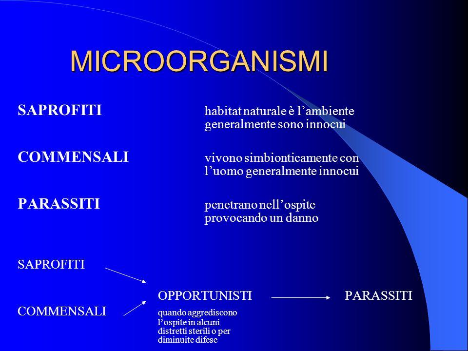 MICROORGANISMI SAPROFITI habitat naturale è lambiente generalmente sono innocui COMMENSALI vivono simbionticamente con luomo generalmente innocui PARA