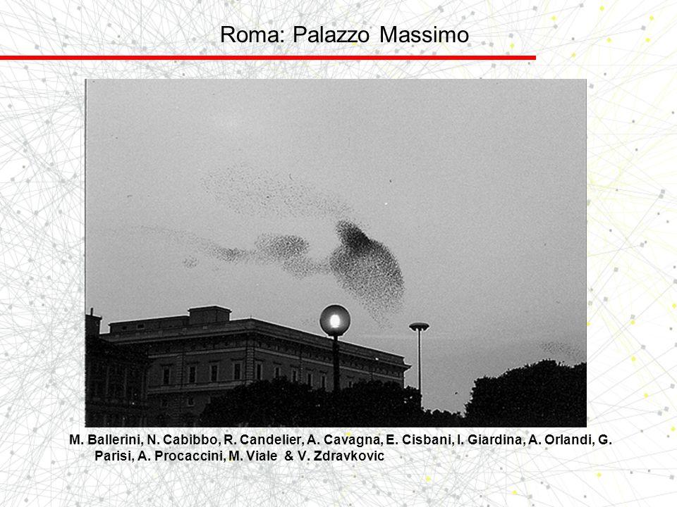 Roma: Palazzo Massimo M. Ballerini, N. Cabibbo, R. Candelier, A. Cavagna, E. Cisbani, I. Giardina, A. Orlandi, G. Parisi, A. Procaccini, M. Viale & V.