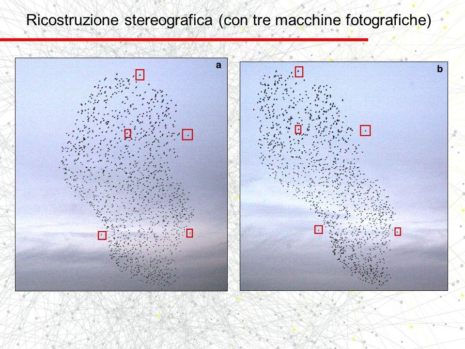 Ricostruzione stereografica (con tre macchine fotografiche)