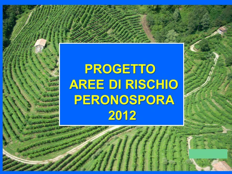 PROGETTO AREE DI RISCHIO AREE DI RISCHIO PERONOSPORA PERONOSPORA2012