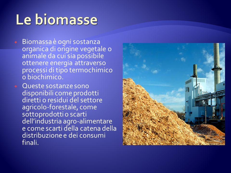 Biomassa è ogni sostanza organica di origine vegetale o animale da cui sia possibile ottenere energia attraverso processi di tipo termochimico o biochimico.
