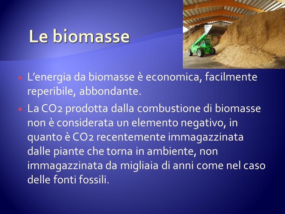 Lenergia da biomasse è economica, facilmente reperibile, abbondante.