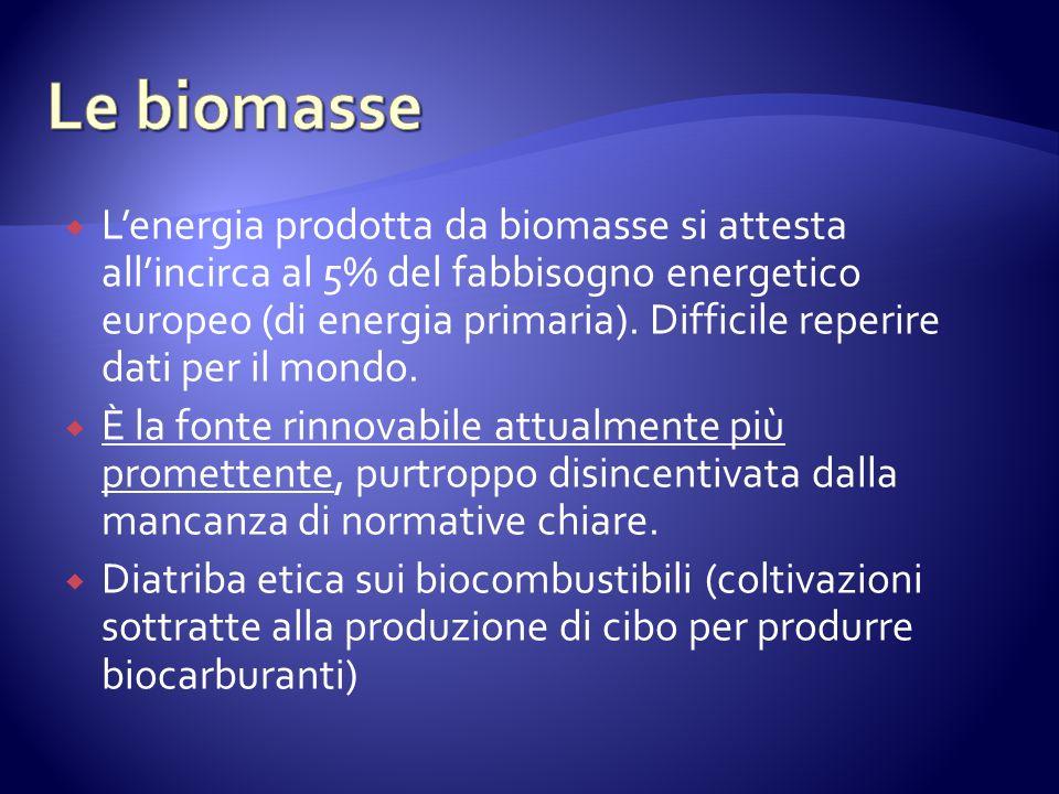 Lenergia prodotta da biomasse si attesta allincirca al 5% del fabbisogno energetico europeo (di energia primaria).