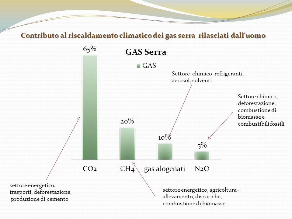 settore energetico, trasporti, deforestazione, produzione di cemento settore energetico, agricoltura - allevamento, discariche, combustione di biomass
