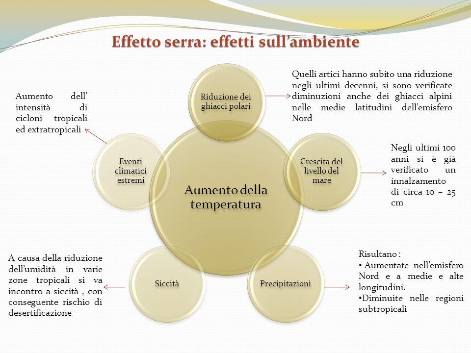 Effetto serra: effetti sullambiente Aumento della temperatura Riduzione dei ghiacci polari Crescita del livello del mare PrecipitazioniSiccità Eventi