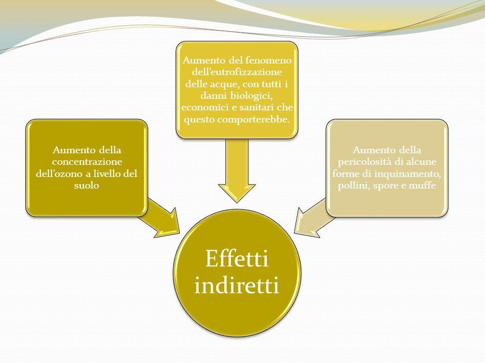 Effetti indiretti Aumento della concentrazione dellozono a livello del suolo Aumento del fenomeno delleutrofizzazione delle acque, con tutti i danni b