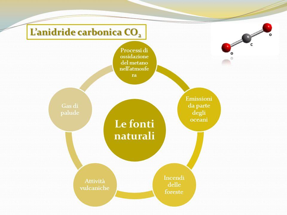 Le fonti naturali Processi di ossidazione del metano nellatmosfe ra Emissioni da parte degli oceani Incendi delle foreste Attività vulcaniche Gas di p
